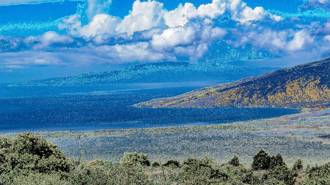 ZOOM Background Maui
